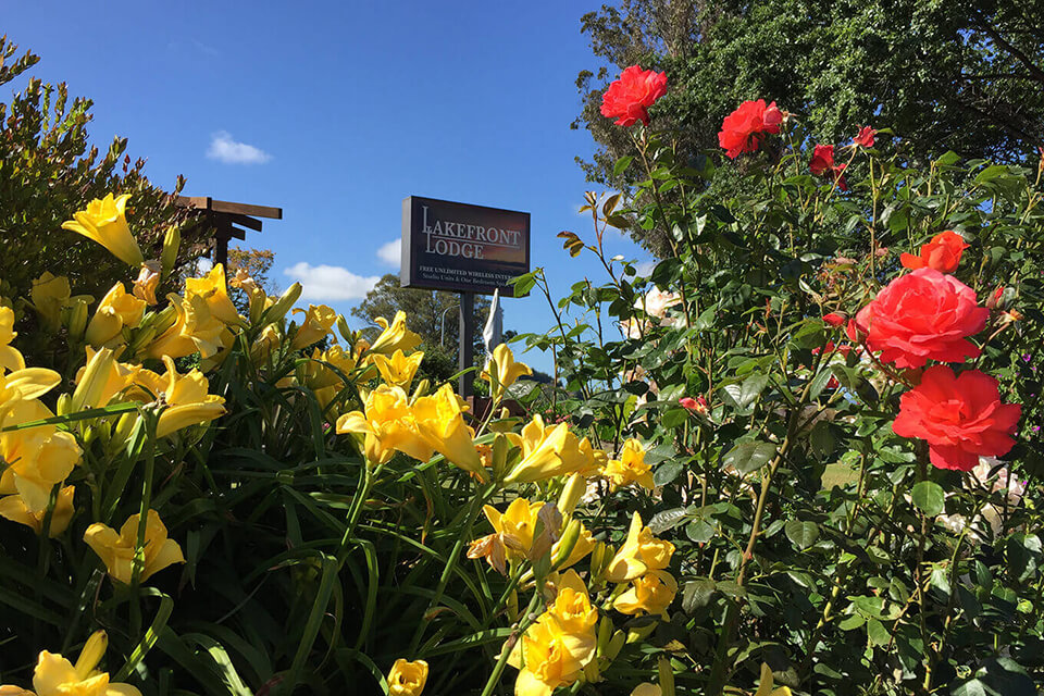 Lakefront Lodge signage with yellow and pink flowers in foreground