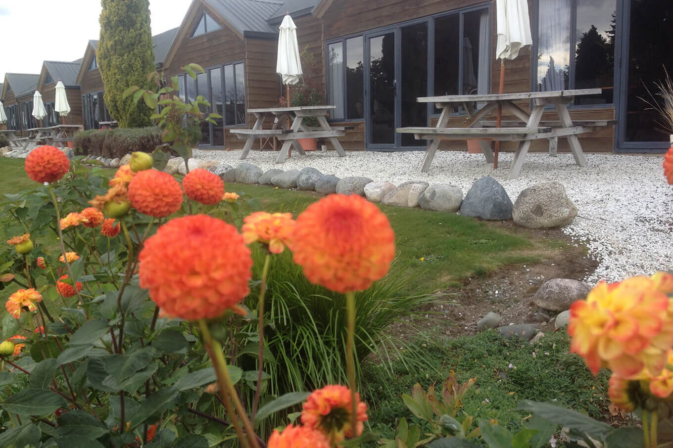 View of seating area outside Lakefront Lodge with orange dahlias in foreground